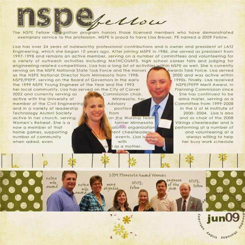NSPE-fellow-web